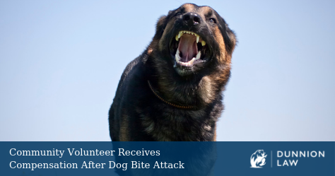 Stock photo of a German Shepherd barking.