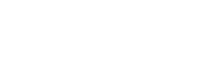 Dunnion Law Logo